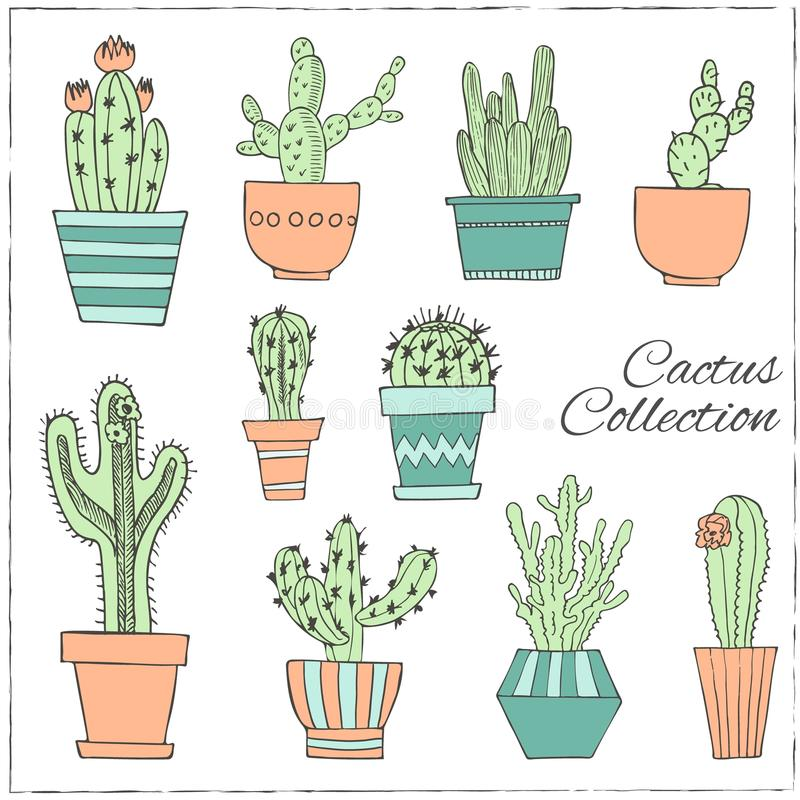 Hand drawn Set of Cactus in the pots. vector illustration