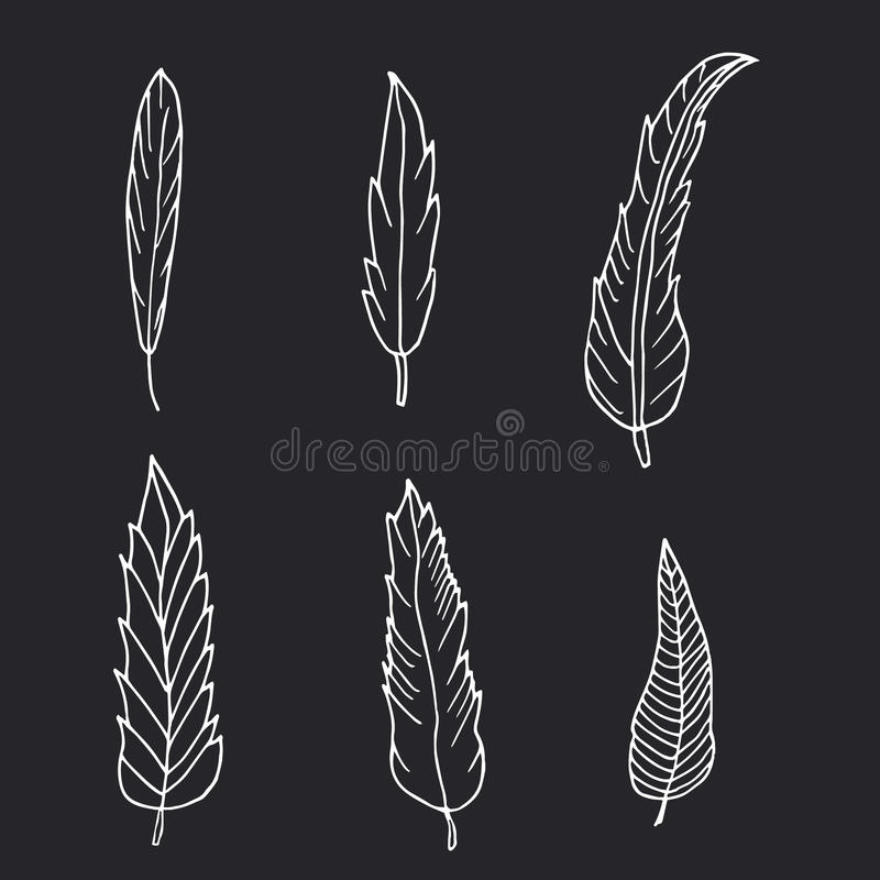 Hand drawn set of feathers on black background. stock photos