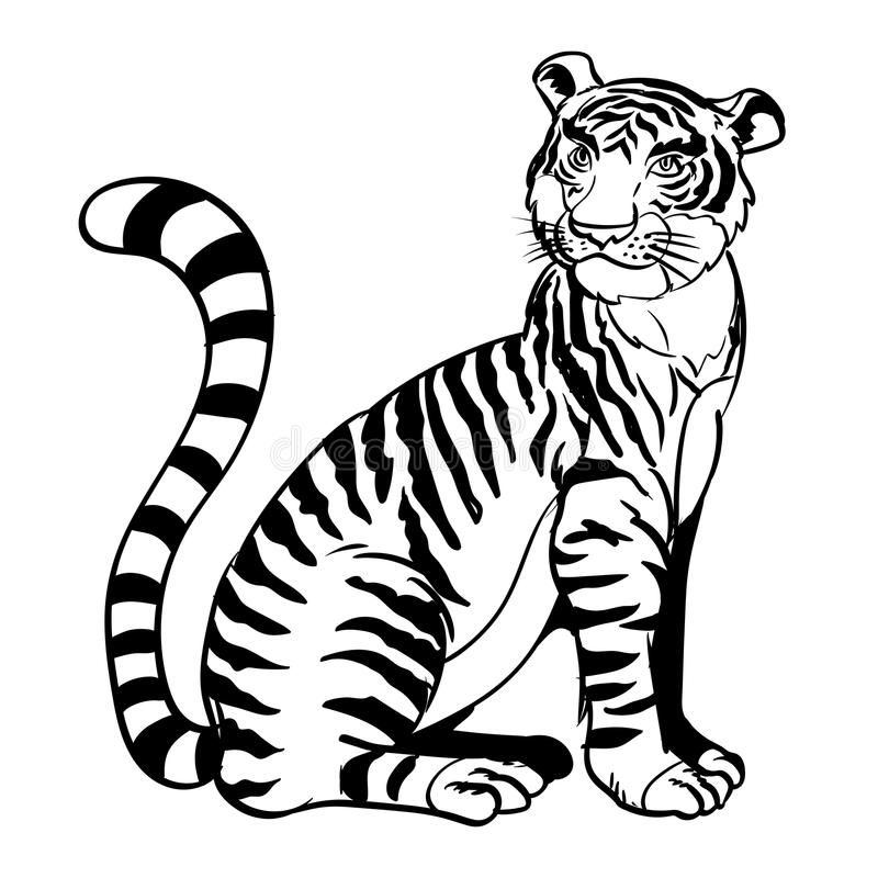 D Line Drawing : Hand drawn sitting tiger vector illustration stock