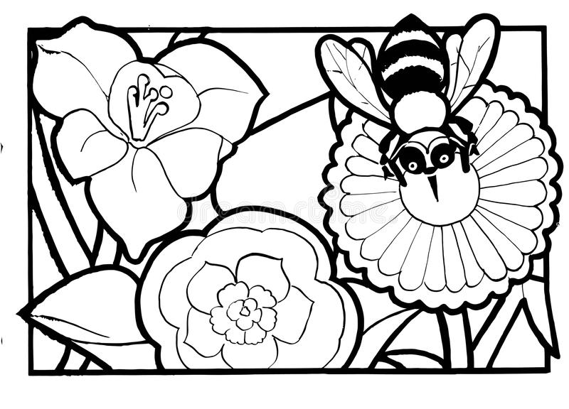 Download Bee And Flower Coloring Page Stock Vector