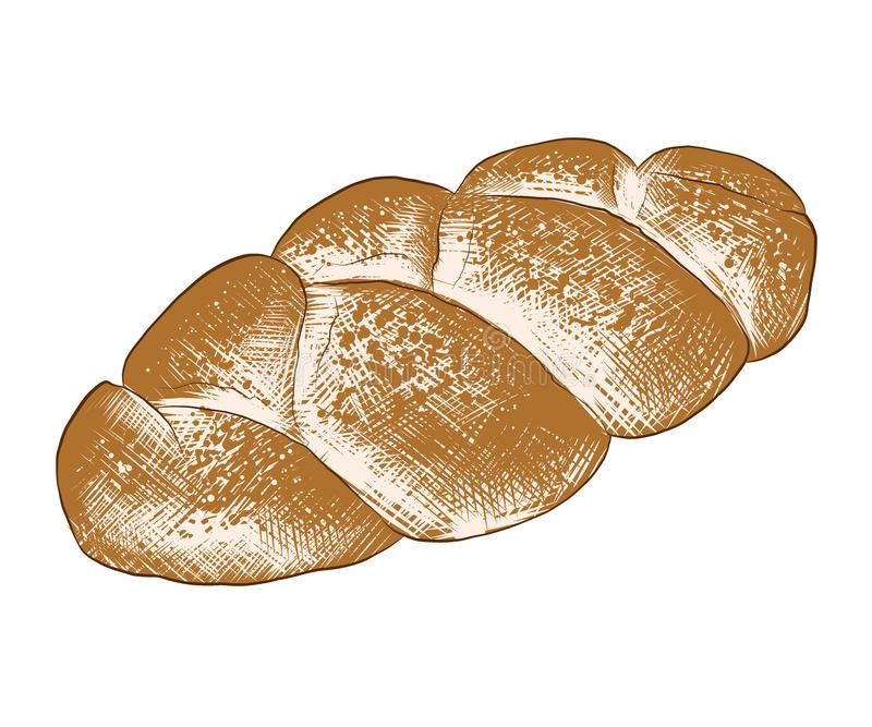 Hand drawn sketch of braided bread loaf in colorful isolated on white background. Detailed vintage woodcut style drawing vector illustration