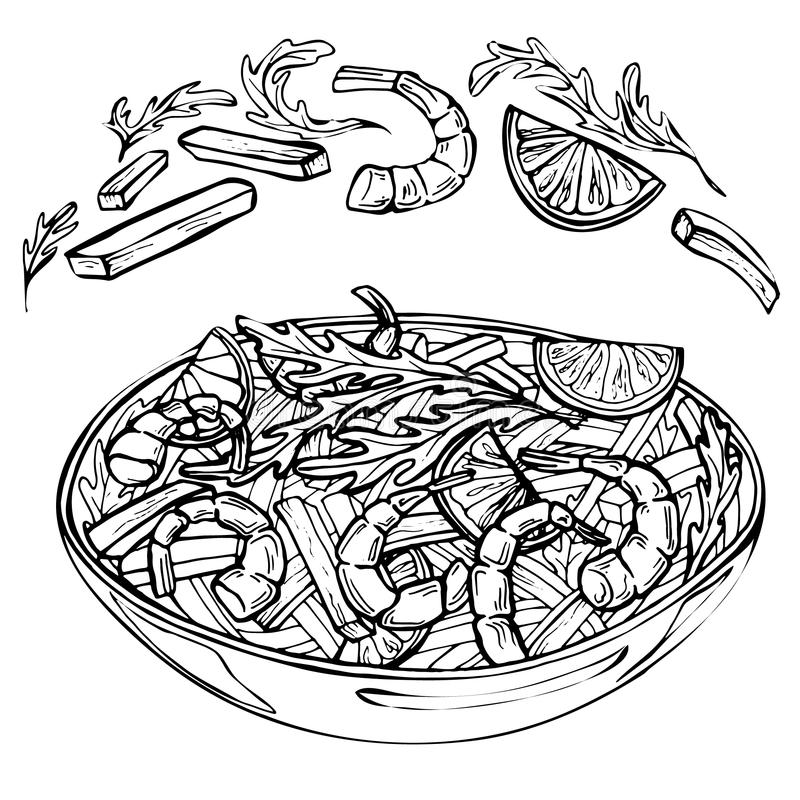 Hand drawn sketch of fresh salad with greens, shrimps, lime, pepper. stock illustration