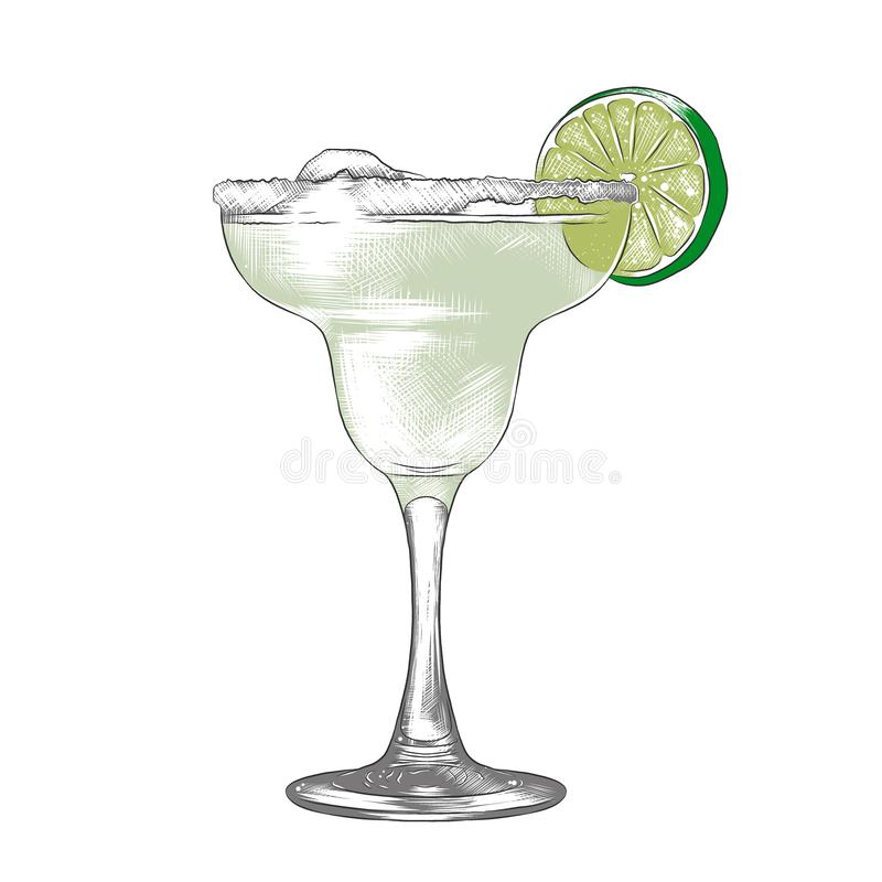 Hand drawn sketch of Margarita alcoholic cocktail, colorful isolated on white background. Detailed vintage woodcut style stock illustration