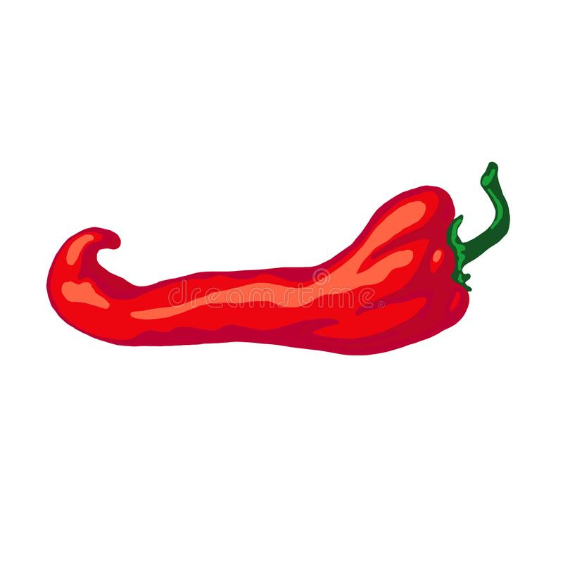 Hand drawn sketch red hot chili pepper, isolated on white background. royalty free illustration