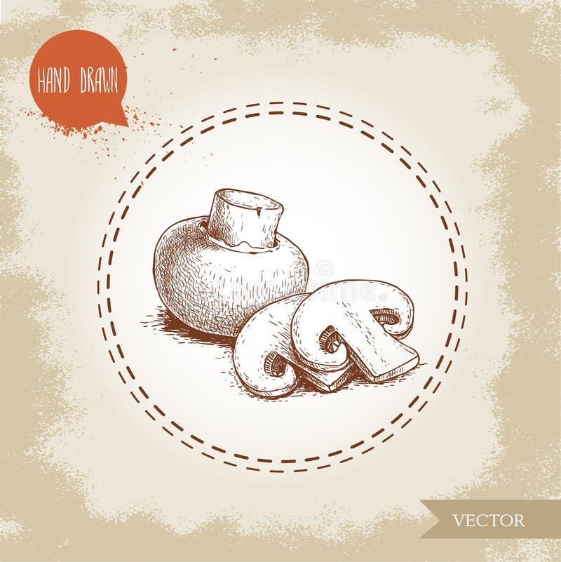 Hand drawn sketch style champignon mushroom composition. Whole and slice cuts. Vector farm fresh food stock illustration