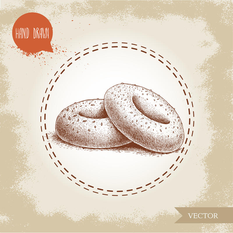 Hand drawn sketch style sesame bagels composition. Daily fresh bakery illustration. Vintage drawing of fresh bakery goods vector illustration