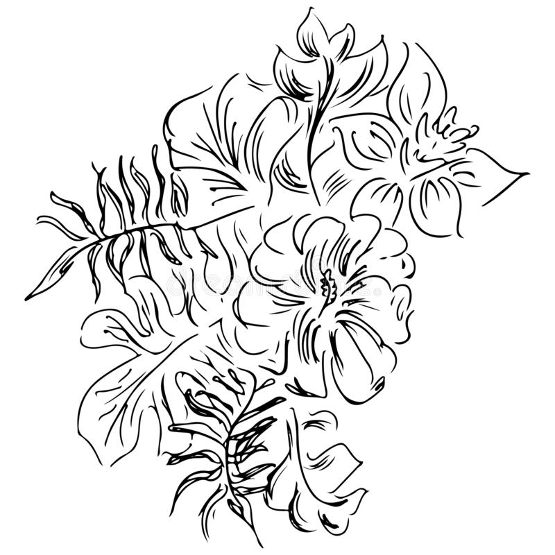 Hand drawn sketch with tropical leaves and flowers isolated on white background. Exotic botanical design elements for wedding. Invitation cards, cosmetics, spa royalty free stock photos