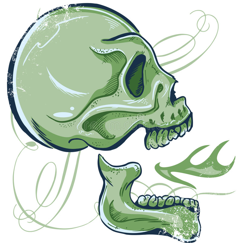 Download Hand Drawn Skull Illustration Side View Stock Vector - Image: 6133160