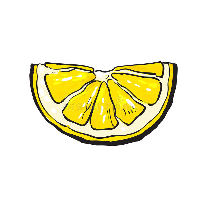Hand drawn slice of lemon, isolated vector illustration. Hand drawn slice of lemon, sketch style vector illustration isolated on white background. Drawing of royalty free illustration