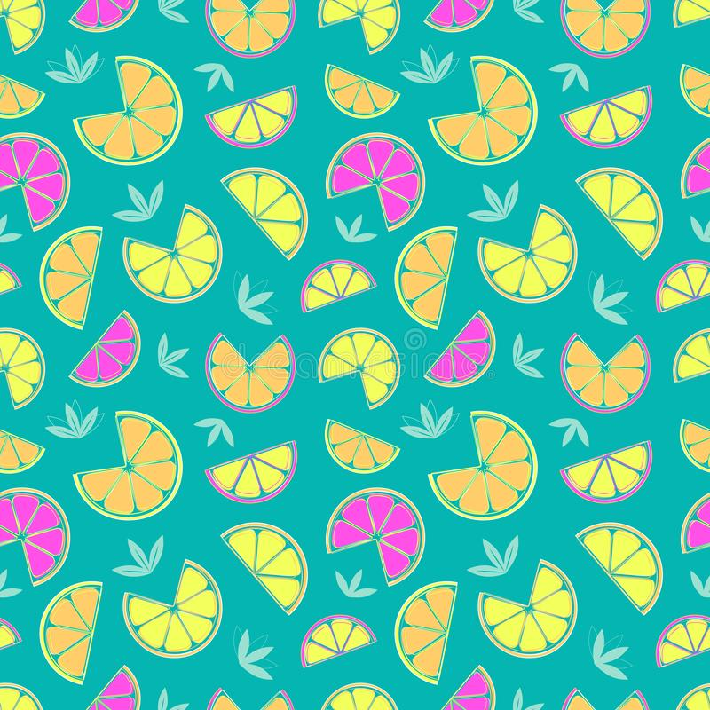 Hand drawn sliced citrus seamless pattern royalty free illustration