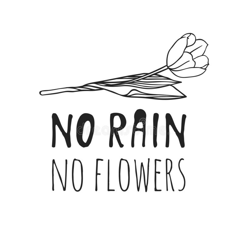 Hand drawn Spring Fashion illustration flower and quote NO RAIN, NO FLOWERS. Black and white actual season vector background. vector illustration