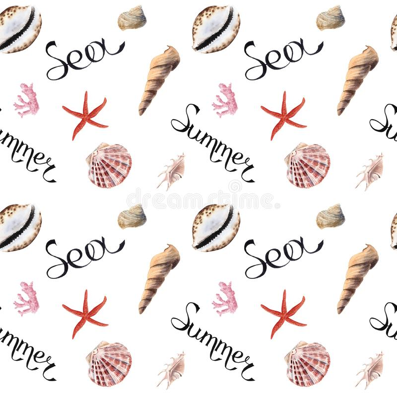 Hand drawn summer sea watercolor seamless patern with shells. On white background vector illustration