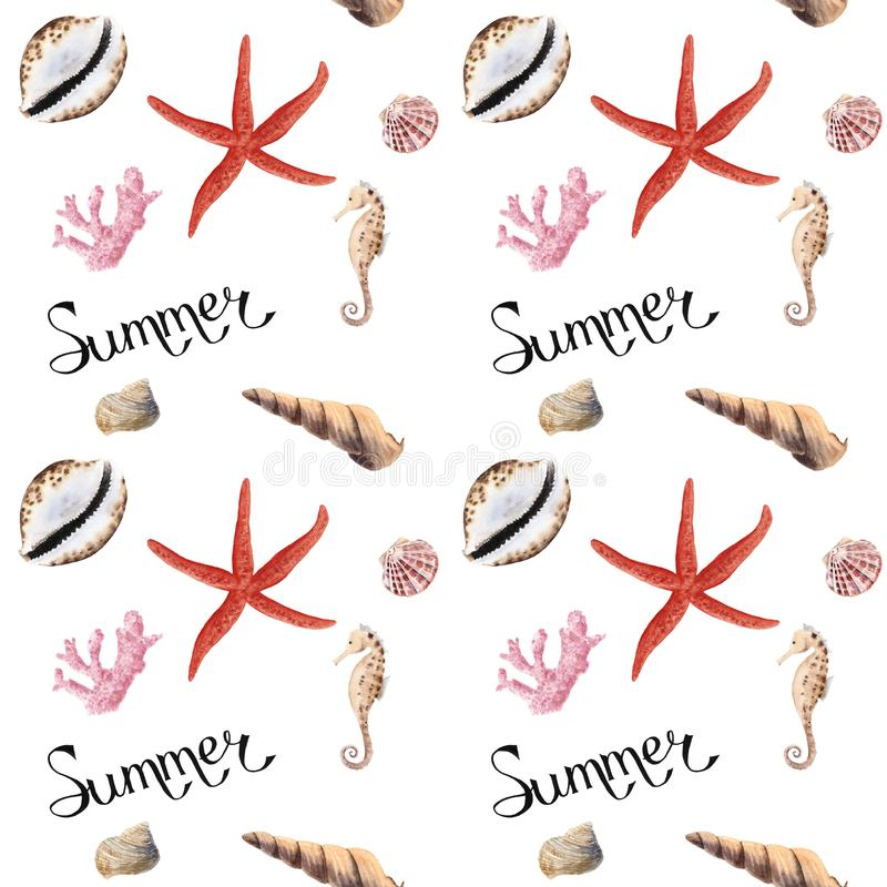 Hand drawn watercolor seamless patern with shells. Hand drawn summer watercolor seamless patern with shells on white background royalty free illustration