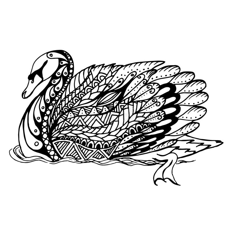 Hand drawn Swan on water for anti stress Coloring Page with high details, isolated on white background. Illustration in zentangle style. Vector monochrome vector illustration