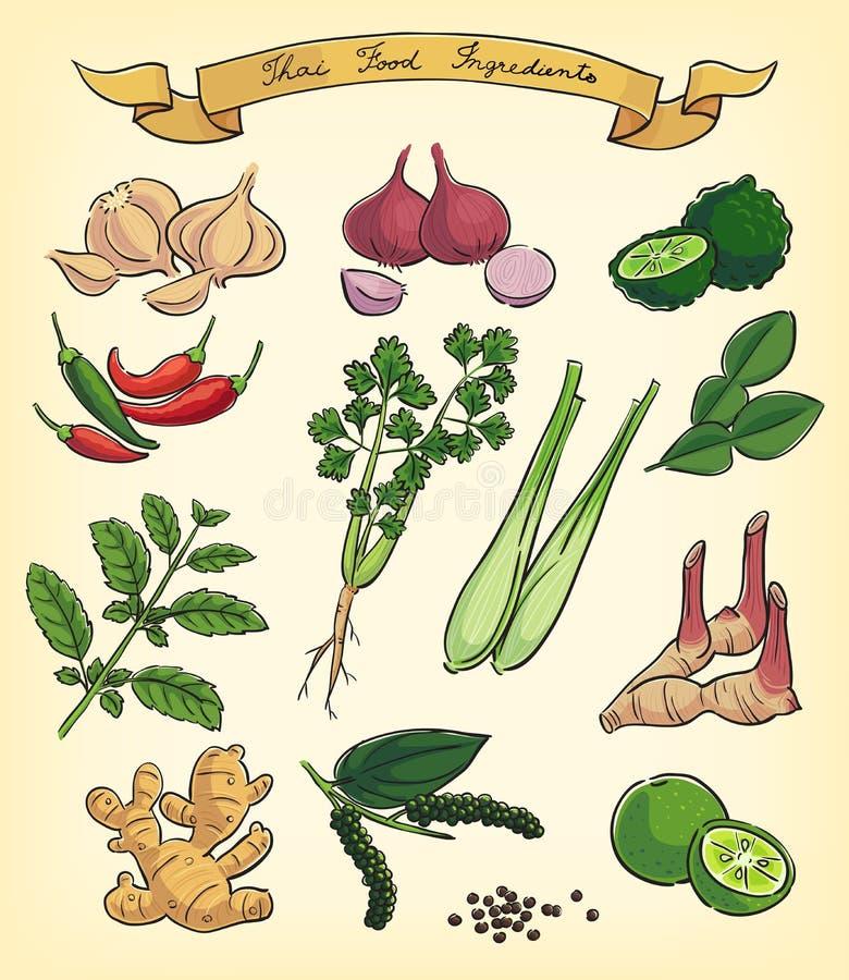 Hand drawn thai food ingredients royalty free illustration