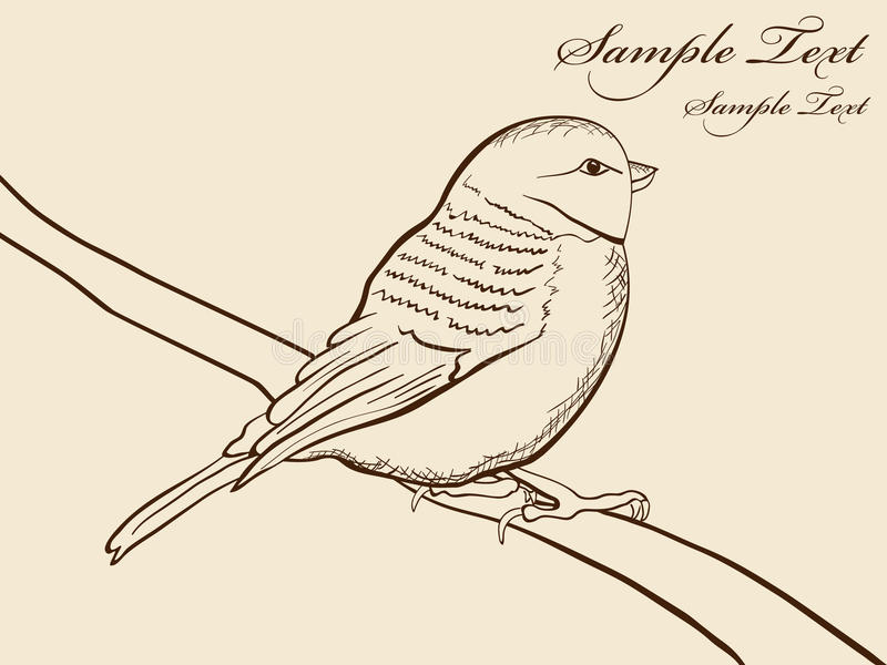 Hand drawn tomtit vector illustration