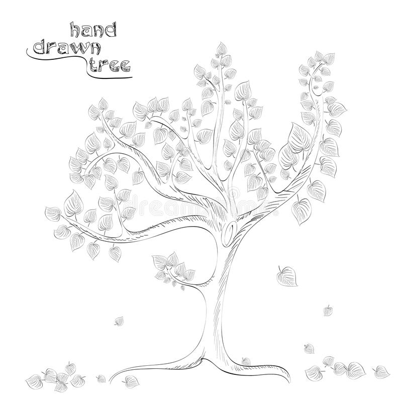 Hand drawn tree with falling leaves. Illustration stock illustration