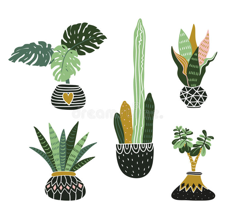 Download Hand Drawn, Tropical House Plants. Scandinavian Style Vector  Illustration, Modern And Elegant