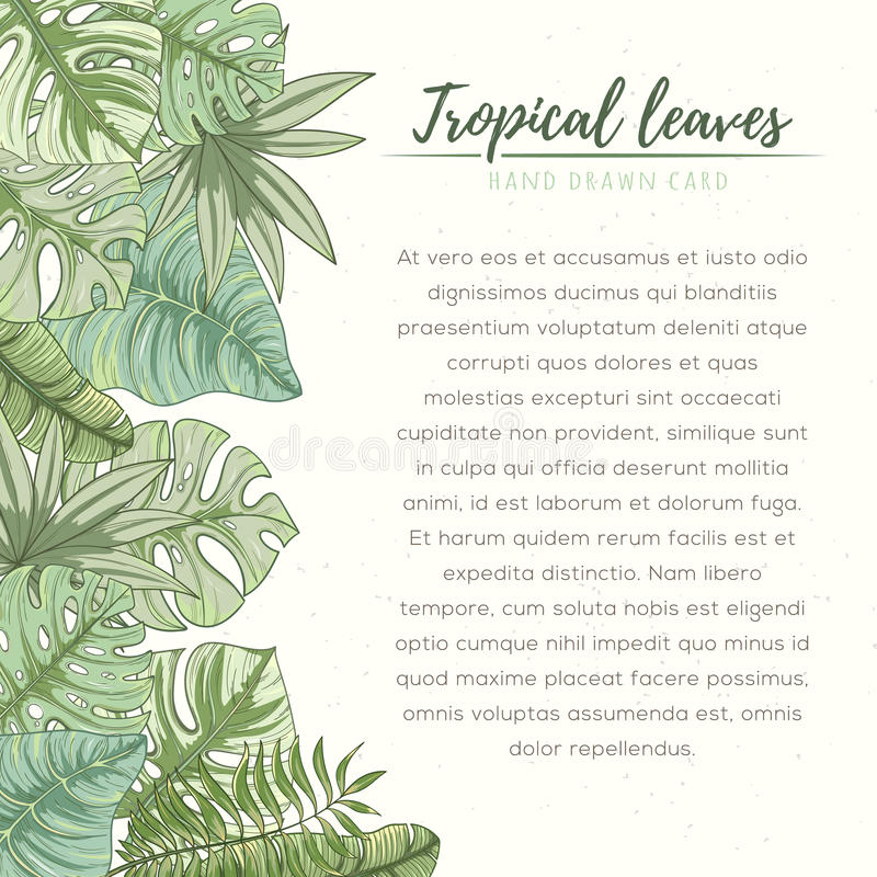Hand drawn tropical palm leaves card stock illustration