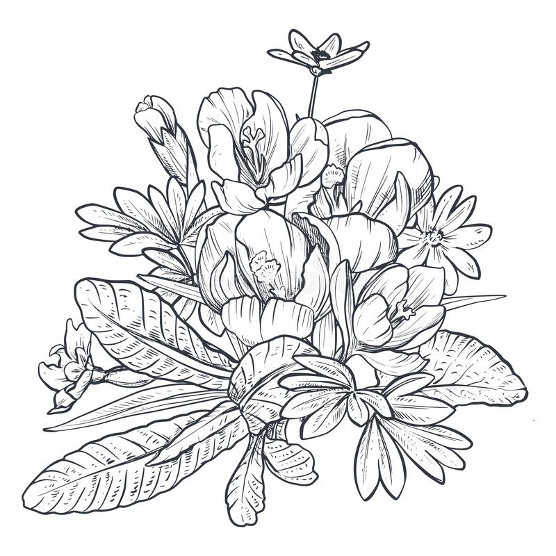 Hand drawn vector bouquet of spring flowers and leaves on white background vector illustration