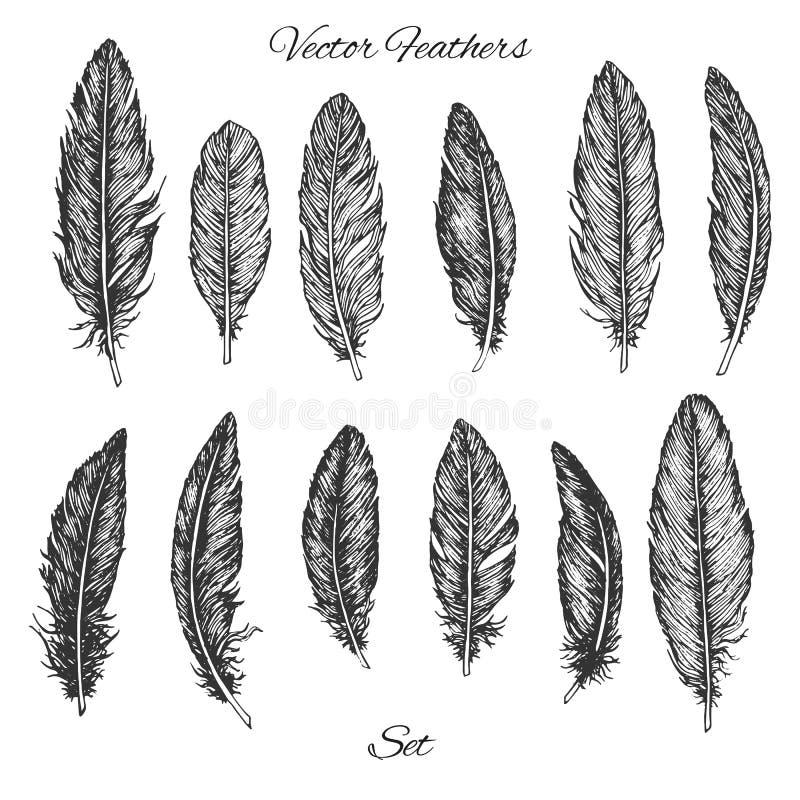 Hand drawn vector feathers set isolated on white background. Detailed boho decoration elements stock illustration