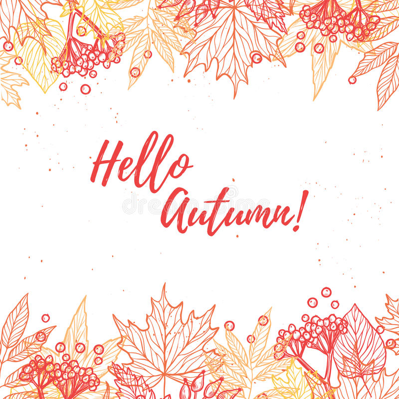 Hand drawn vector illustration. Background with Fall leaves and. Berries. Forest design elements. Hello Autumn vector illustration