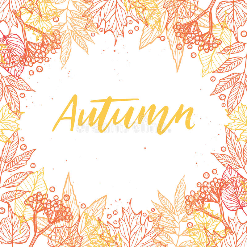 Hand drawn vector illustration. Background with Fall leaves and. Berries. Forest design elements. Hello Autumn stock illustration