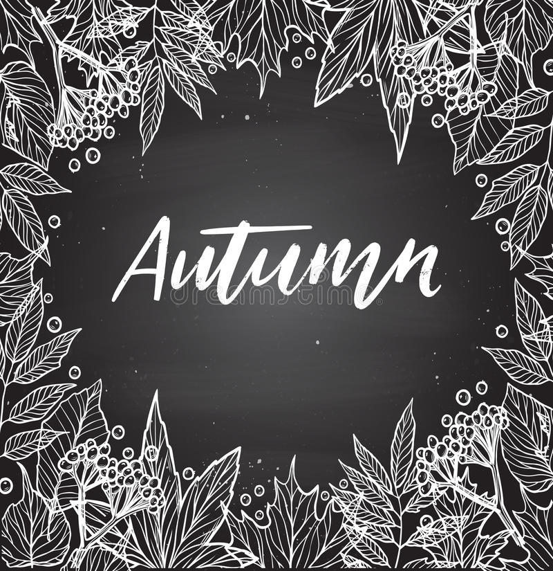 Hand drawn vector illustration. Chalky background with Fall leaves and berries. Forest design elements. Autumn! stock illustration