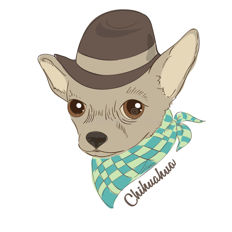 Hand drawn vector illustration of hipster dog for cards, t-shirt print, placard. Fashion portrait of chihuahua dog wearing hat vector illustration