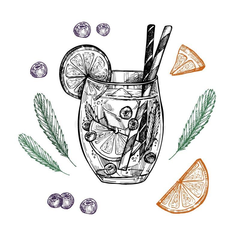 Hand drawn vector illustration - Lemonade with blueberry, mint a. Nd lemons stock illustration