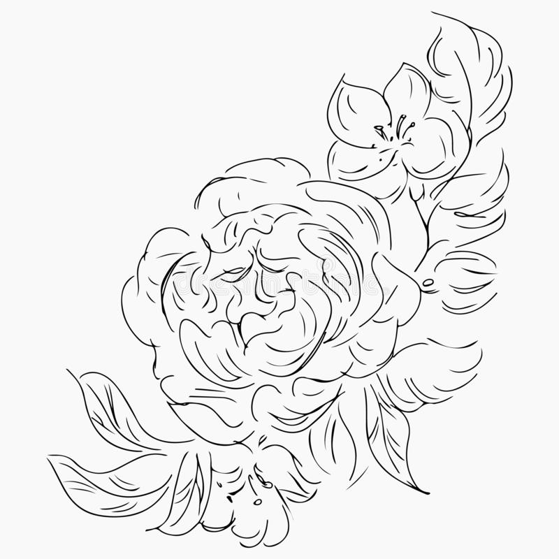 Hand Drawn Vector Illustrations Of Abstract Peony Flower Isolated on Gray. Floral Design Elements For Invitations, Greeting Cards royalty free illustration