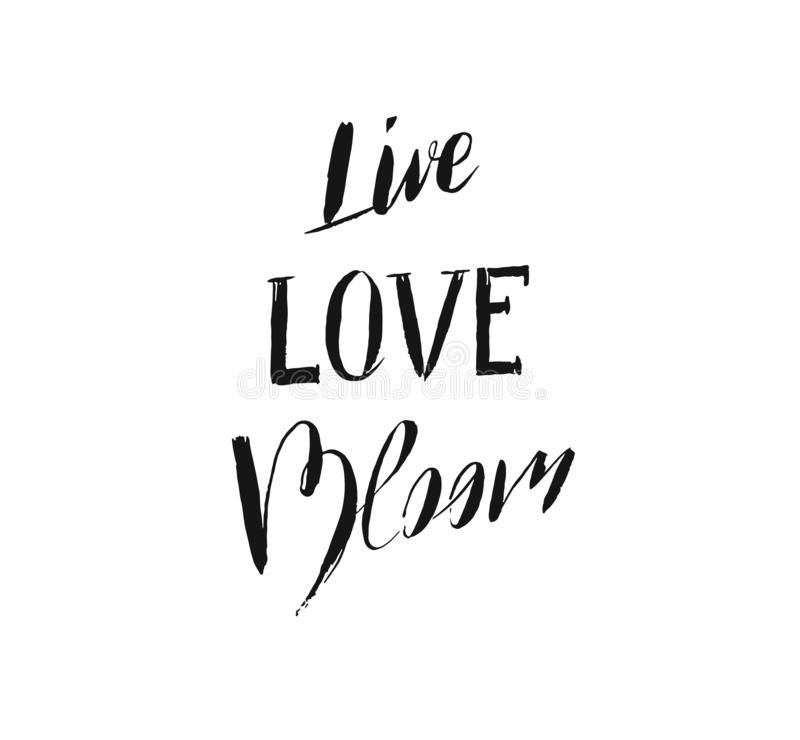 Hand drawn vector ink graphic handwritten calligraphy lettering text Live Love Bloom isolated on white background.Spring stock illustration