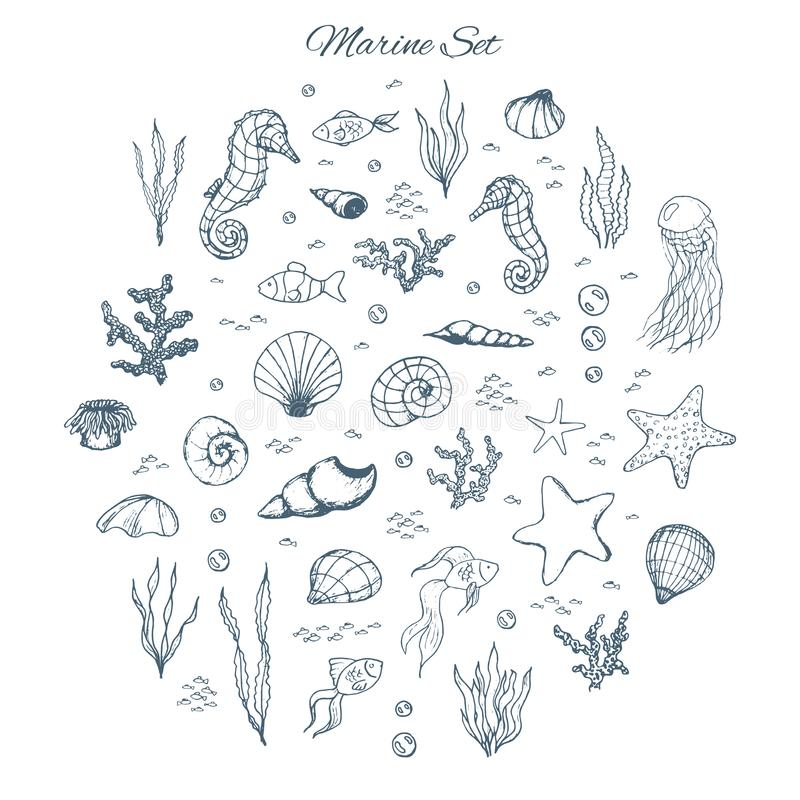 Hand drawn vector marine set with seahorses, shells, stars, seaweed, fish, coral and bubbles. Sea creatures outline on the white stock illustration