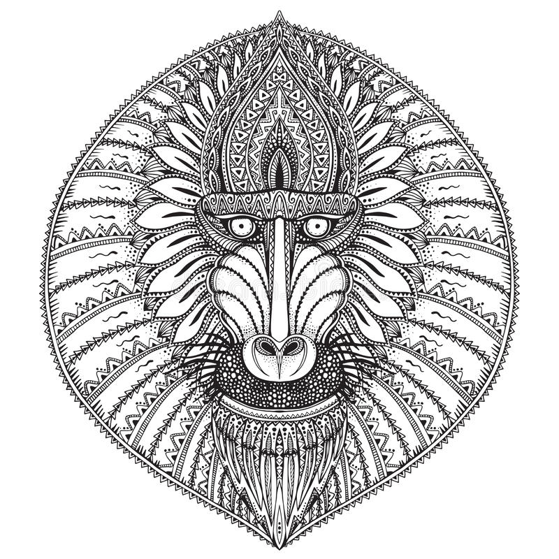 Hand drawn vector ornate baboon face illustration. vector illustration