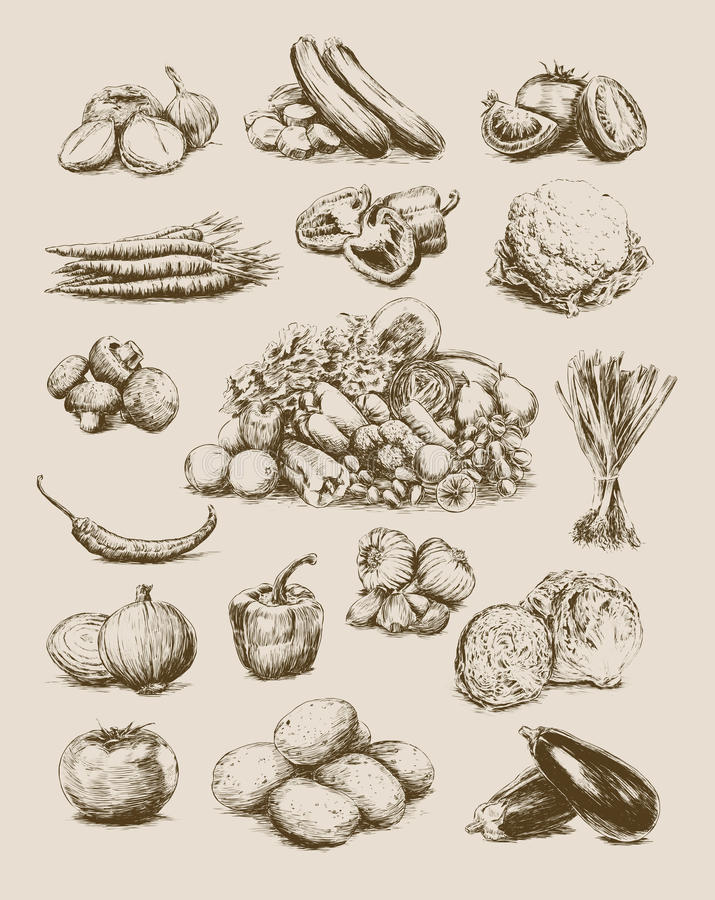 Hand Drawn Vegetables Set Royalty Free Stock Image
