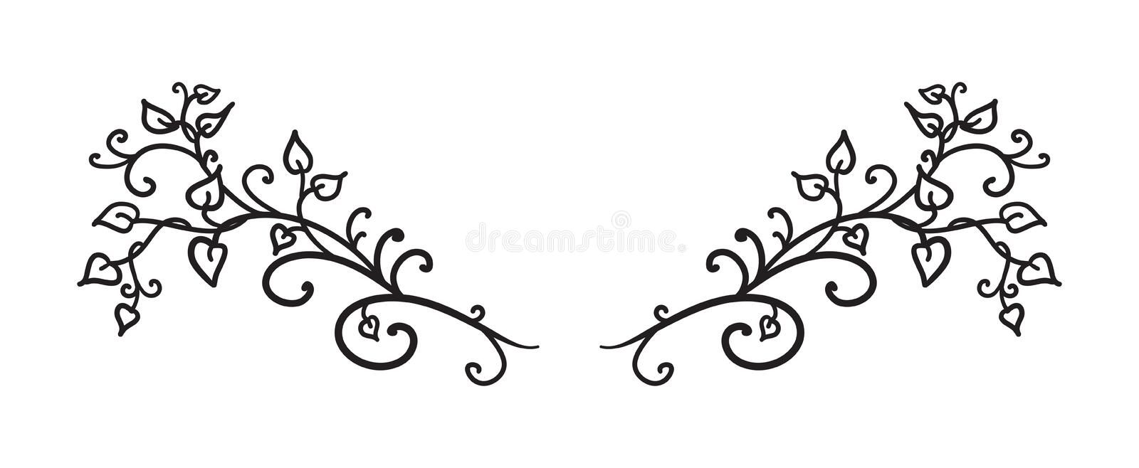 Hand drawn vines leaves curls and swirls vector in fancy design element paragraph or text divider, wedding design royalty free stock photos
