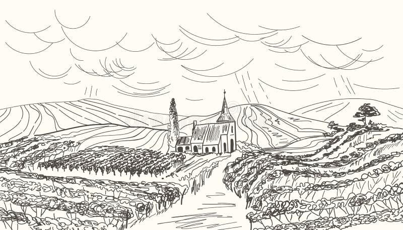 Hand drawn vineyard landscape. Vintage vector illustration.  stock illustration
