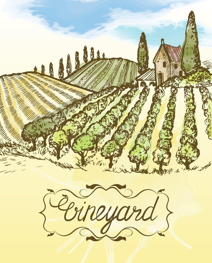 Hand drawn vineyard landscape. Vintage vector watercolor illustration. Lettering in frame. vector illustration