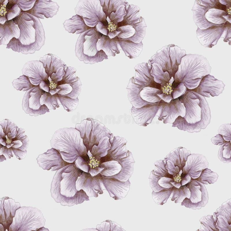Download Hand-drawn Vintage Hibiscus Pattern Stock Illustration - Illustration: 32289874