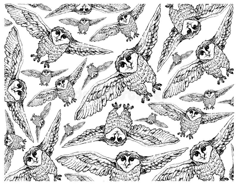 Hand Drawn Wallpaper Background of Autumn Owls vector illustration