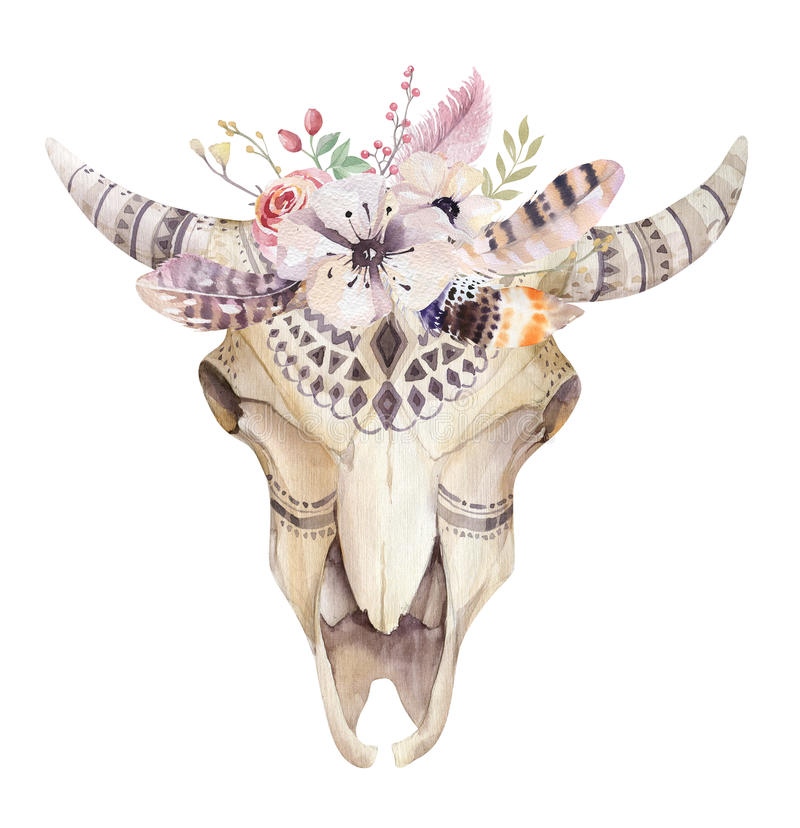 Free Hand Drawn Watercolor Bohemian Cow Skull. Western Mammals. Royalty Free Stock Image - 70288416
