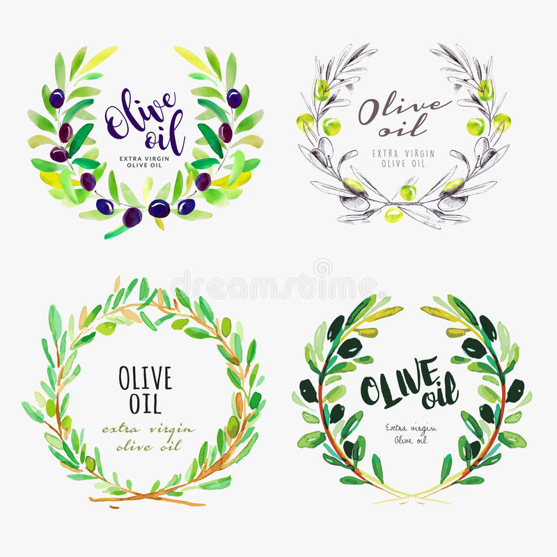 Hand drawn watercolor elements of olive oil vector illustration