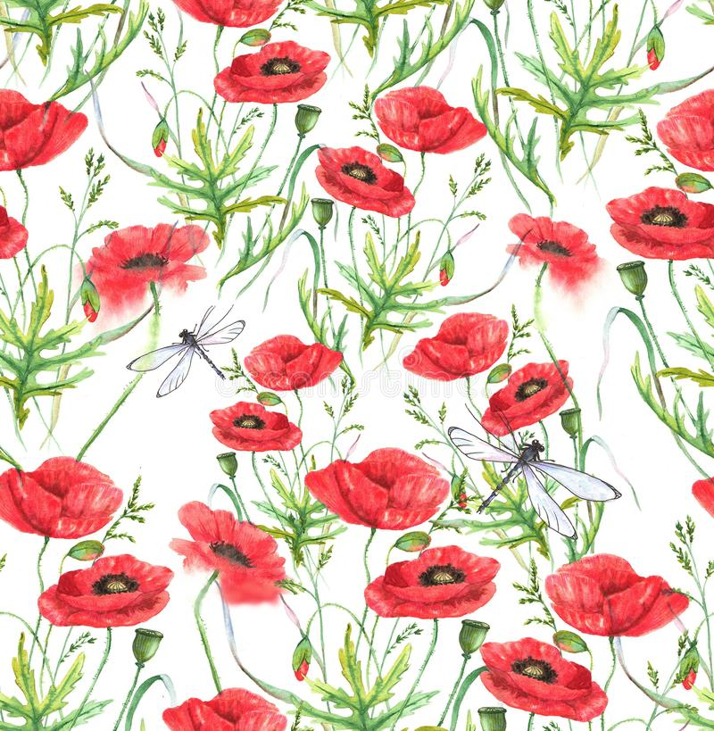 Hand-drawn watercolor floral seamless pattern. Summer meadow flowers - poppy on the white background stock illustration
