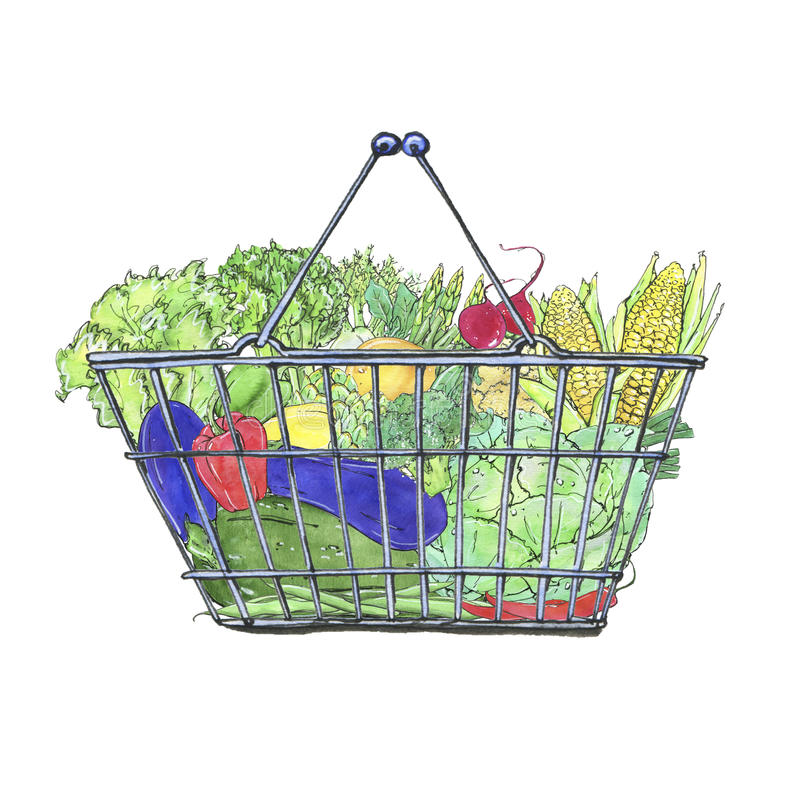 Hand drawn watercolor food baskets with vegetables vector illustration