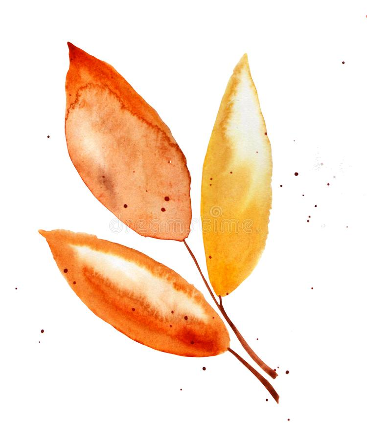Hand drawn watercolor illustration. Autumn Botanical clipart. Set of fall leaves and branches. Floral Design elements on white. Hand drawn watercolor vector illustration