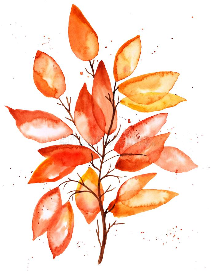 Hand drawn watercolor illustration. Autumn Botanical clipart. Set of fall leaves and branches. Floral Design elements on white. Hand drawn watercolor stock illustration