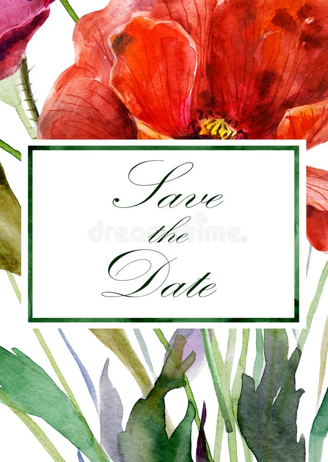 Hand drawn watercolor illustration. Background from poppy flowers close up and label with text. royalty free illustration