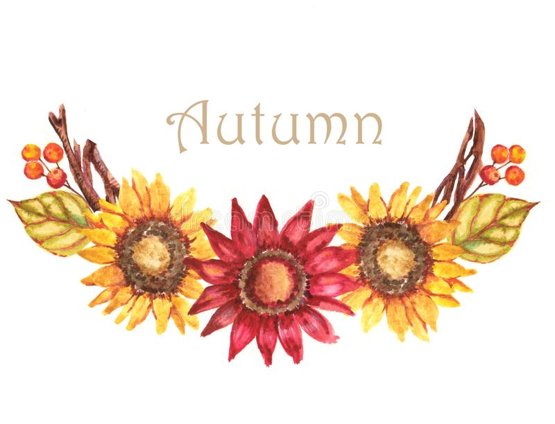Hand-drawn watercolor illustration of the beautiful autumn bouquet with sunflowers and berries vector illustration
