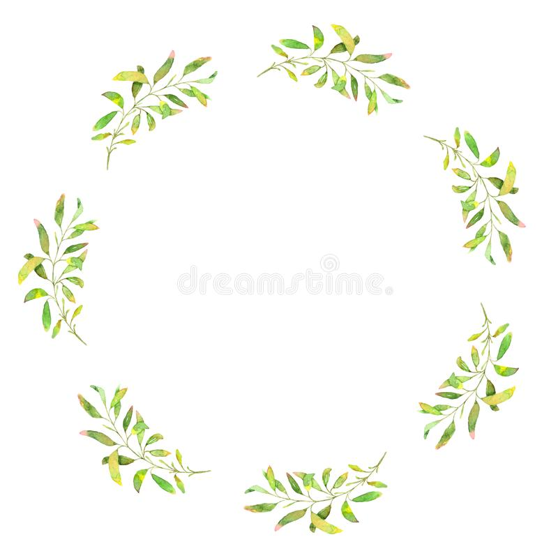 Hand drawn watercolor illustration. Botanical wreath of green branches and leaves. stock photography