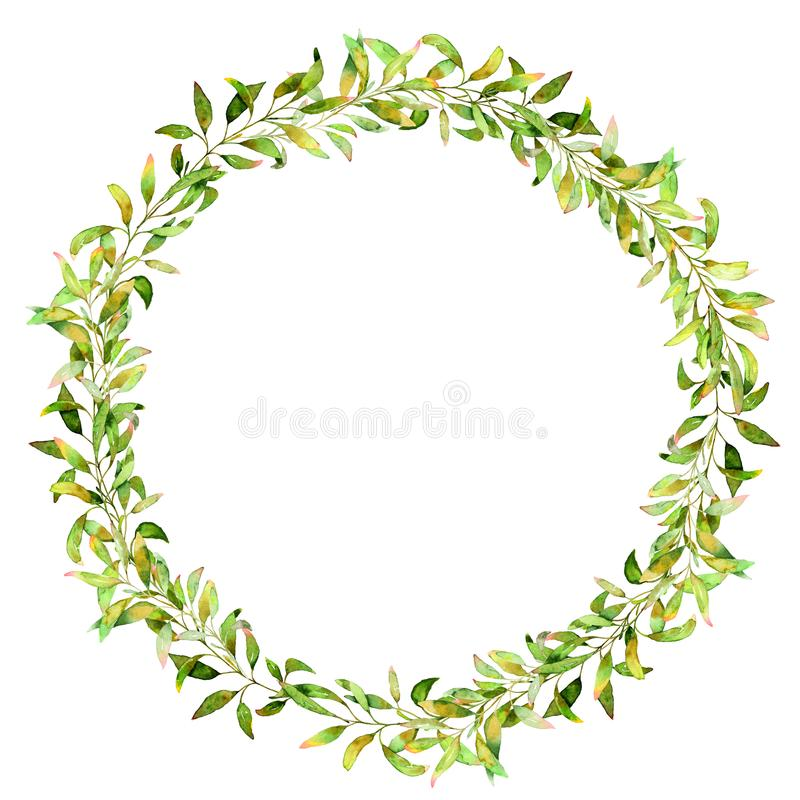 Hand drawn watercolor illustration. Botanical wreath of green branches and leaves. royalty free stock images